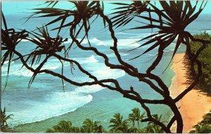 Lauhala (Pandanus Tree Ke'e Beach Kaui Hawaii Vintage Standard View Postcard