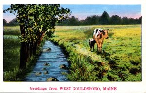 Maine Greetings From West Gouldsboro