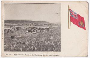 Canada; A Typical Cattle Ranch in The Northwest Territories PPC, 1907 Winnipeg