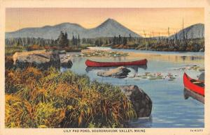 Sourdnahunk Valley Maine Lily Pad Pond Scenic View Antique Postcard K64407