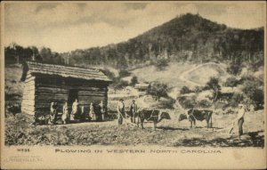 Publ in Asheville NC Mountains Family Oxen Plow Cabin c1905 Albertype PC
