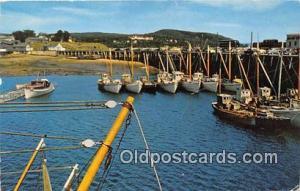 Digby Scallop Fleet  Ship Postcard Post Card Postcard Post Card Digby Scallop...