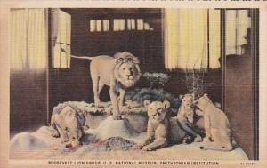Washington D C Roosevelt Lion Group U S National Museum Smithsonian Instituti...