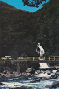 New Zealand Falls Creek on Milford Road