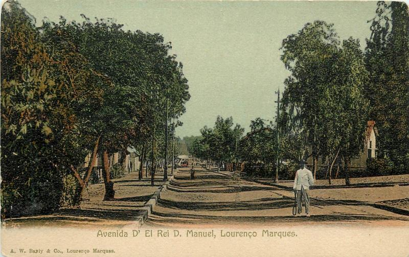Avenida D' El rio D. Manuel, Lourenco Marques Undivided Back Postcard