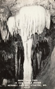RP: RT 66 ; Stanton , Missouri , 1930-40s ; Meramec Caverns , Royal Palm Tree