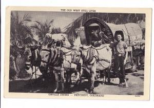 Pritchett CO Orville Ewing Mules Goats Wagon Postcard