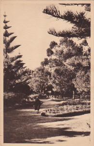MAZAGAN, Morocco, 1900-1910's; Paul Doumer Park