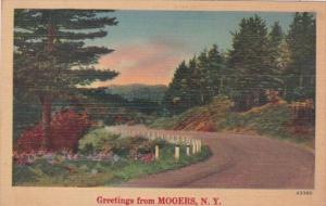 New York Greetings From Mooers
