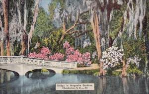 South Carolina Charleston Bridge In Magnolia Gardens