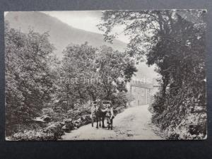 Derbyshire: Millers Dale, Man & Cart - Old Postcard by Raphael Tuck & Sons 3503