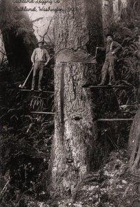 WA - Cathlamet. Cathlamet Logging Co., 1903  (5.75 X 4 Photo Reprint)