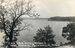 Paynesville Minnesota~Lake Koronis~View From Hotel Koronis 1940s Real Photo~RPPC