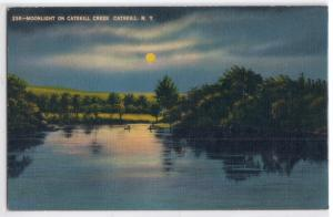 Moonlight on Catskill Creek, Catskill Mts