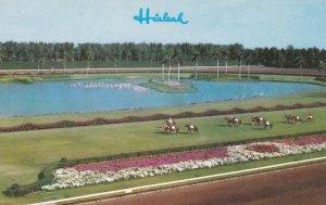 MIAMI, Florida, 50-60s ; Hialeah Racecourse, Horseracing