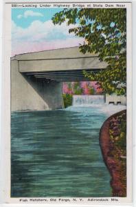 Dam, Bridge & Fish Hatchery, Old Forge NY