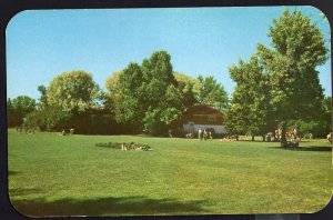 Alberta ~ MEDICINE HAT The spacious lawns in the Rotary Park Chrome 1950s-1970s