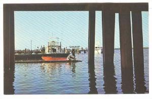 Fishing on the catwalk beloow the U.S. Highway 50 Bridge, Ocena City, Marylan...