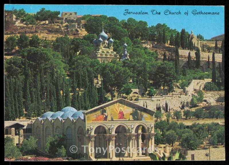 Jerusalem - The Church of Gethsamane