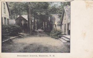 Broadhead Avenue, HEDDING, New Hampshire, PU-1911