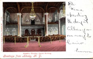 New York Greetings From Albany With Capitol Building Assembly Chamber 1904