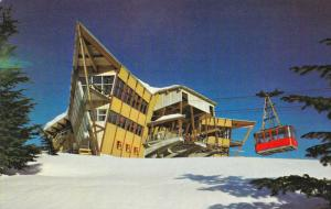 At the Top of Grouse Mountain, Skii Lift, North Vancouver, British Columbia, ...