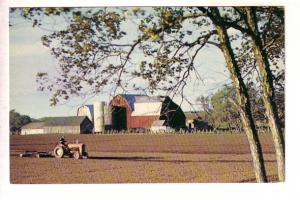 Typical Farm Scene, Greetings from Caledonia, Ontario, Photo Lloyd Thompson