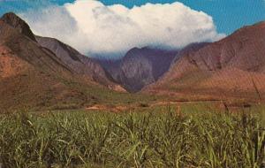 Hawaii Maui Ukumehame Canyon On The Road To Lahaina 1974