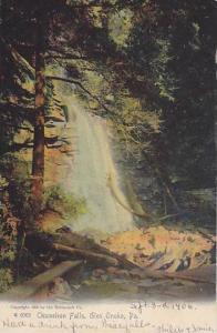 Chameleon Falls, Glen Onoko,Pennsylvania, 00-10s