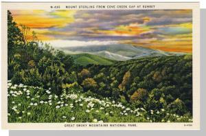 Smoky Mountains Nat'l Park,NC/TN Postcard,Sterling,Nr Mint!