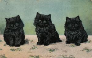 Three Blue-Eyed Black Kittens, The Carol Singers, PU-1907