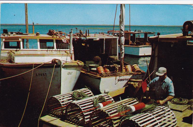 Lobsterman Baiting His Traps, CAPE COD, Massachusetts, 40-60´s