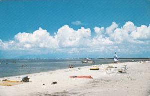 View of Beach, FT. DE SOTO PARK, Florida, PU-1979