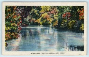 Greetings from OLIVEREA, NEW YORK NY ~ Ulster County 1946  Postcard