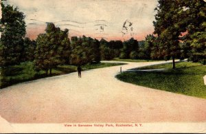 New York Rochester View In Genesee Valley Park 1908