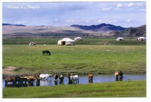 Mongolia,Asia,80-90s,Life   On The Steppe Is Tranquil, Often Only The Sounds ...
