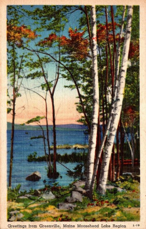 Maine Greetings From Greenville 1946