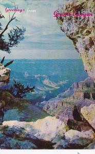 Arizona Greetings From The Grand Canyon 1961