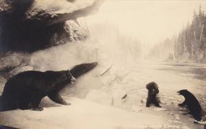 RP, State Museum, Black Bears, University Of Washington Campus, SEATTLE, Wash...