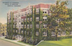 MEMPHIS, Tennessee; University of Tennesee School of Medicine, 30-40s