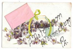 Bloomsburg Pa Note Envelope Add-On Glitter Vintage Postcard