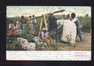 AIKEN SOUTH CAROLINA BLACK AMERICANA COTTON WORKERS VINTAGE POSTCARD S.C.