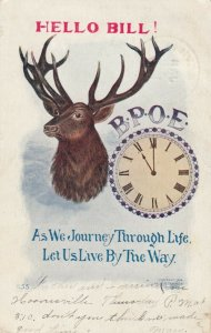 Hello Bill!, B. P. O. E., Mounted Buck Head, Clock striking 11, PU-1907