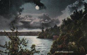 MUSKOKA, Ontario, Canada, PU-1913; A Bit Of Muskoka Lakes