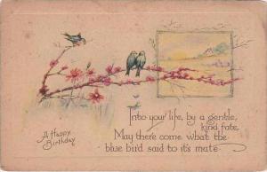 Happy Birthday Greetings Birds Sitting on Branch