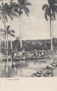 Cuban Volanta , Cuba , 1900-10s; Horse drawn cart