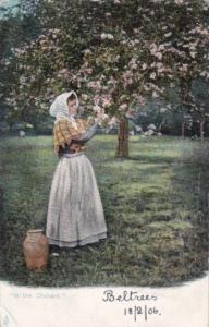Tucks SIn The Orchard Rural Life Series 1906