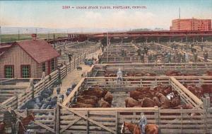 Oregon Portland Cattle At The Union Stock Yards
