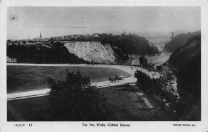 Clifton Downs The Sea Walls Horse Carriage Rides Postcard