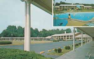 HENDERSON, Kentucky, 1940-60s; Kentucky Terrace Motel, Parking Lot & Swimming...